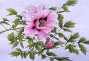 Peony-Rockii-Pink-Lotus