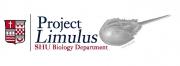 BestLimulus_edited-1